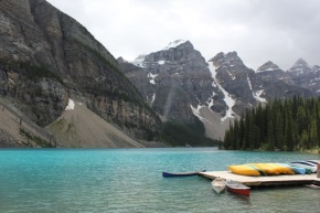 Canada & USA 2011 – dag 8 –Wildlife