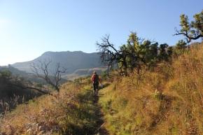 Zuid-Afrika 2013 – Dag 10 – Terug naarJohannesburg