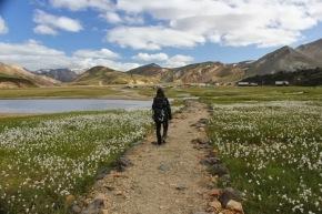 IJsland 2013 – dag 2 tot 6 – Vijfdaagse trektocht over deLaugavegur