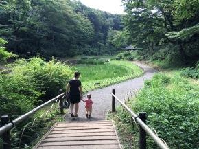Japan 2017 – dag 12 – van Muji naarMeji